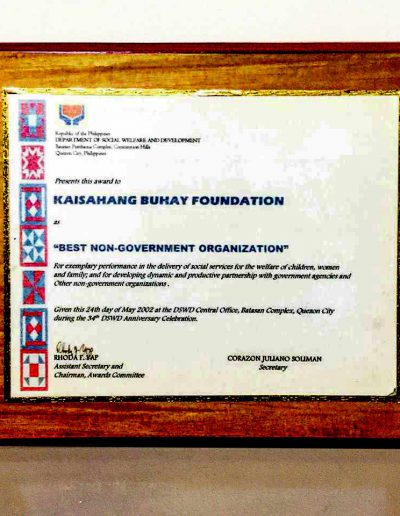 May 24, 2002 - Best Non-Government Organization